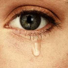 02-tears-bitters.w529.h529.2x