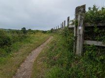 Fence pad