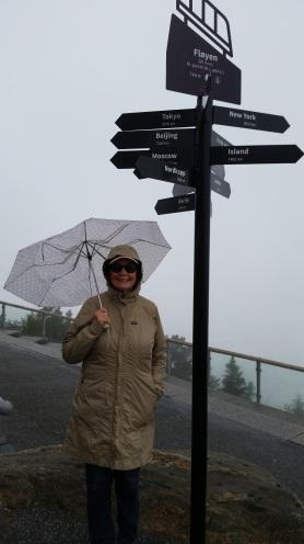 Bergen-Mount Floyen20170621_110513